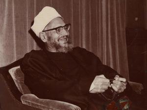 abdel-halim-mahmoud
