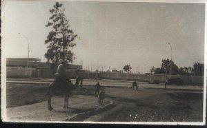 استاد دمنهور سنة 1963